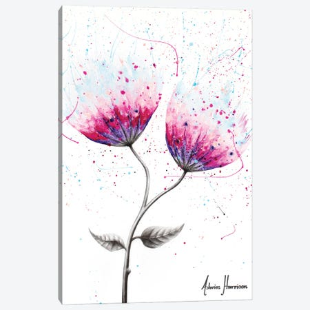 Due Bloom Canvas Print #VIN653} by Ashvin Harrison Canvas Artwork