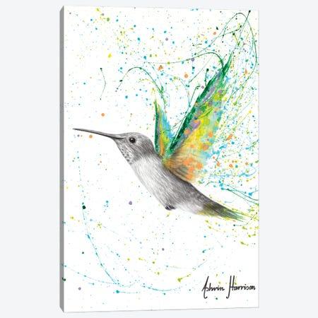 Peach Summer Hummingbird Canvas Print #VIN658} by Ashvin Harrison Canvas Art