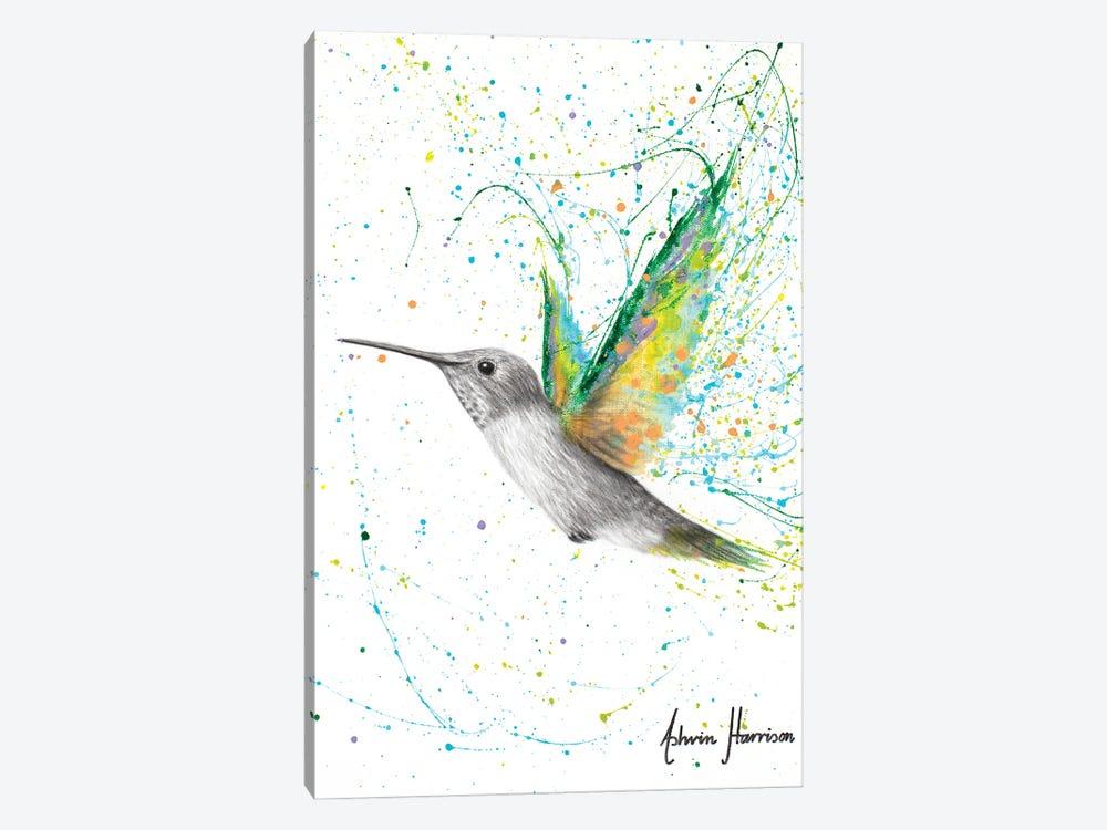 Peach Summer Hummingbird by Ashvin Harrison 1-piece Canvas Art Print