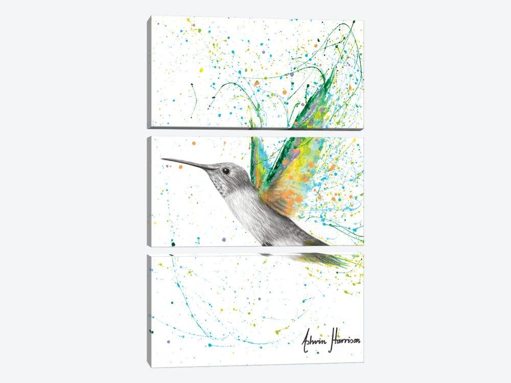 Peach Summer Hummingbird by Ashvin Harrison 3-piece Canvas Print