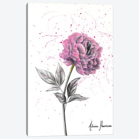 Soft Bloom Canvas Print #VIN668} by Ashvin Harrison Art Print