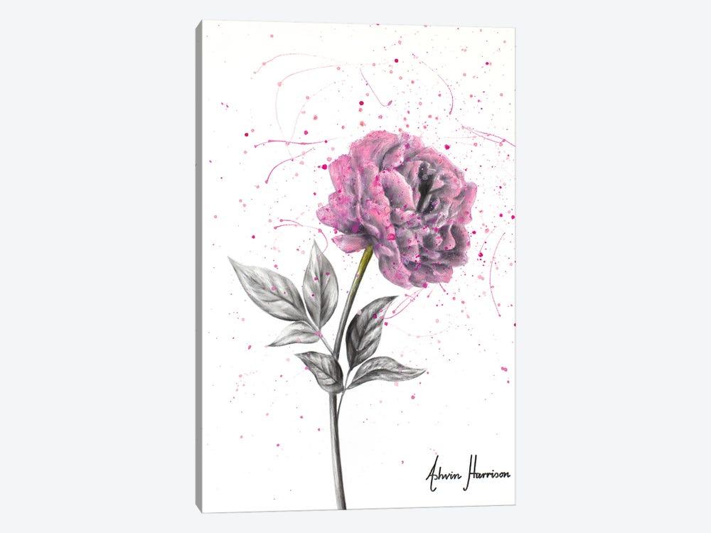 Soft Bloom by Ashvin Harrison 1-piece Canvas Artwork