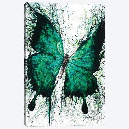 Night Garden Butterfly Canvas Print #VIN66} by Ashvin Harrison Canvas Wall Art