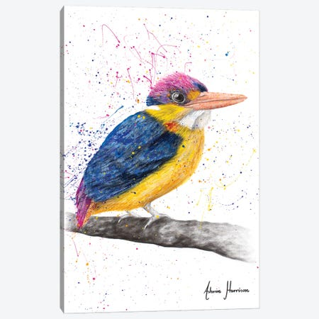 Indian Kingfisher Canvas Print #VIN673} by Ashvin Harrison Canvas Artwork