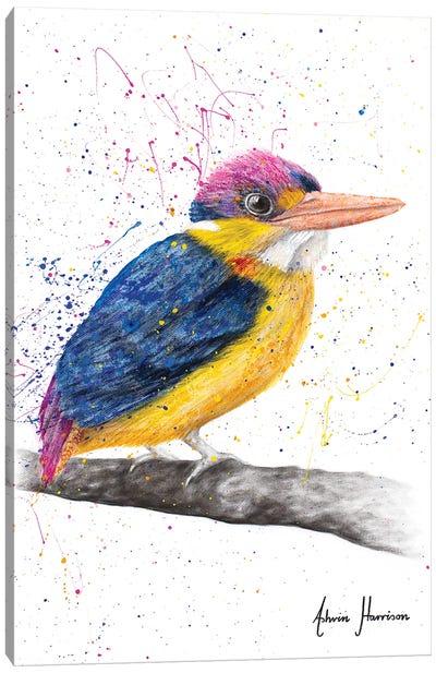 Indian Kingfisher Canvas Art Print