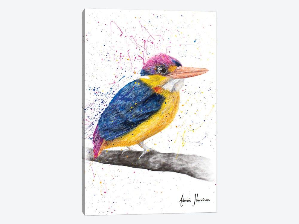 Indian Kingfisher by Ashvin Harrison 1-piece Canvas Artwork
