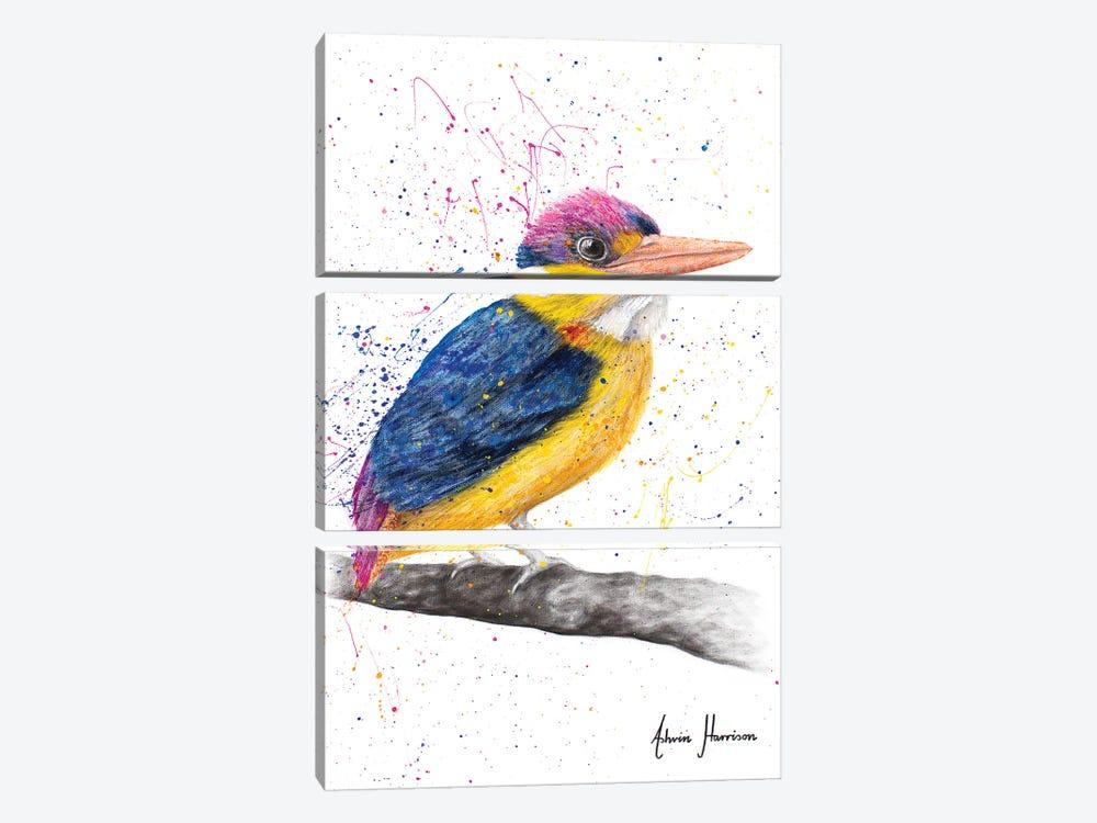 Indian Kingfisher by Ashvin Harrison 3-piece Canvas Art