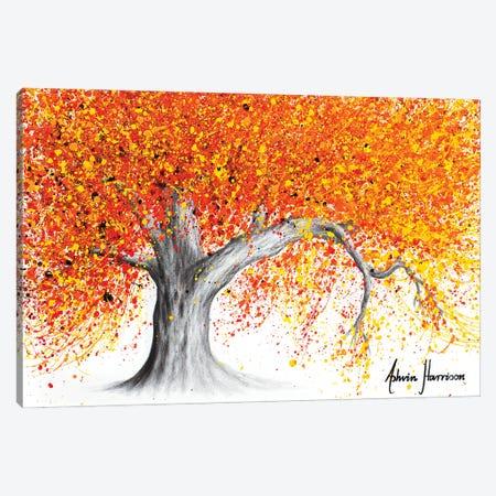 Western Sunset Tree Canvas Print #VIN682} by Ashvin Harrison Canvas Print