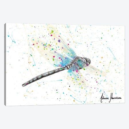 Melaleuca Dragonfly Canvas Print #VIN686} by Ashvin Harrison Canvas Artwork