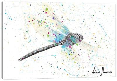 Melaleuca Dragonfly Canvas Art Print