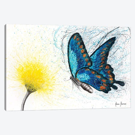 Bloomful Butterfly Canvas Print #VIN691} by Ashvin Harrison Canvas Wall Art