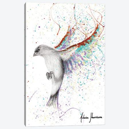 Lavender Lake Bird Canvas Print #VIN693} by Ashvin Harrison Canvas Art