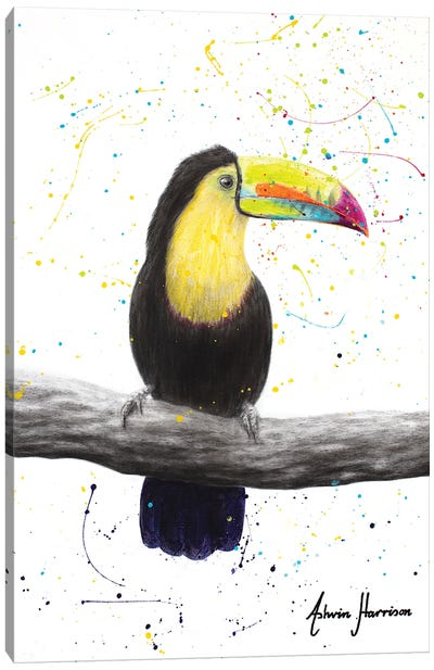 Talented Toucan Canvas Art Print