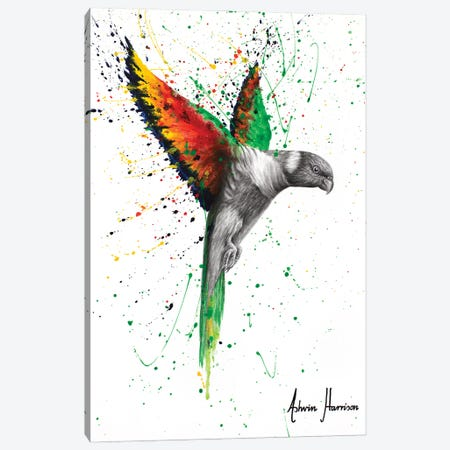 Lorikeet Larrikin Canvas Print #VIN709} by Ashvin Harrison Canvas Artwork