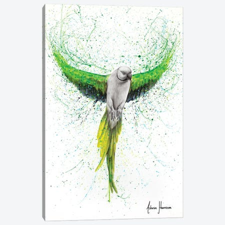 Faithful Flyer Canvas Print #VIN711} by Ashvin Harrison Canvas Art Print