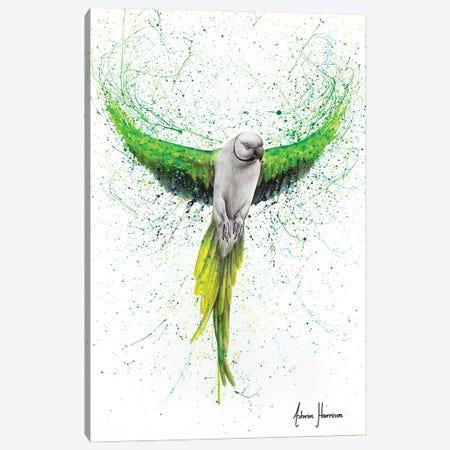 Faithful Flyer Canvas Print #VIN711} by Ashvin Harrison Canvas Art Print