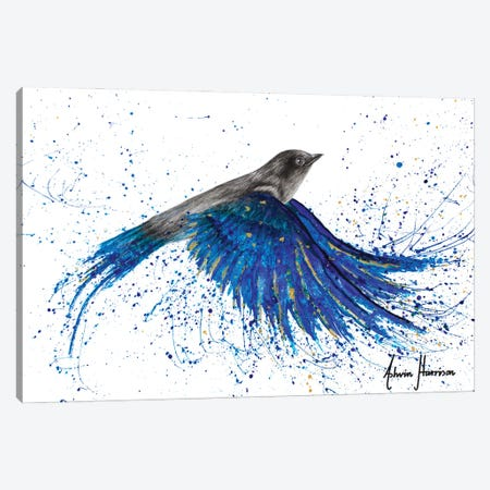Vibrant Ocean Bird Canvas Print #VIN721} by Ashvin Harrison Canvas Art