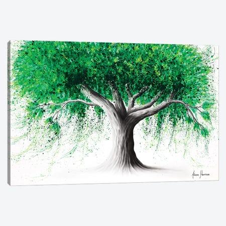 Emerald Park Tree Canvas Print #VIN737} by Ashvin Harrison Canvas Art