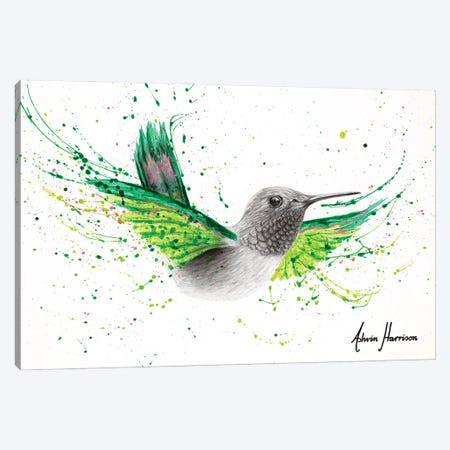 River City Hummingbird Canvas Print #VIN740} by Ashvin Harrison Canvas Artwork