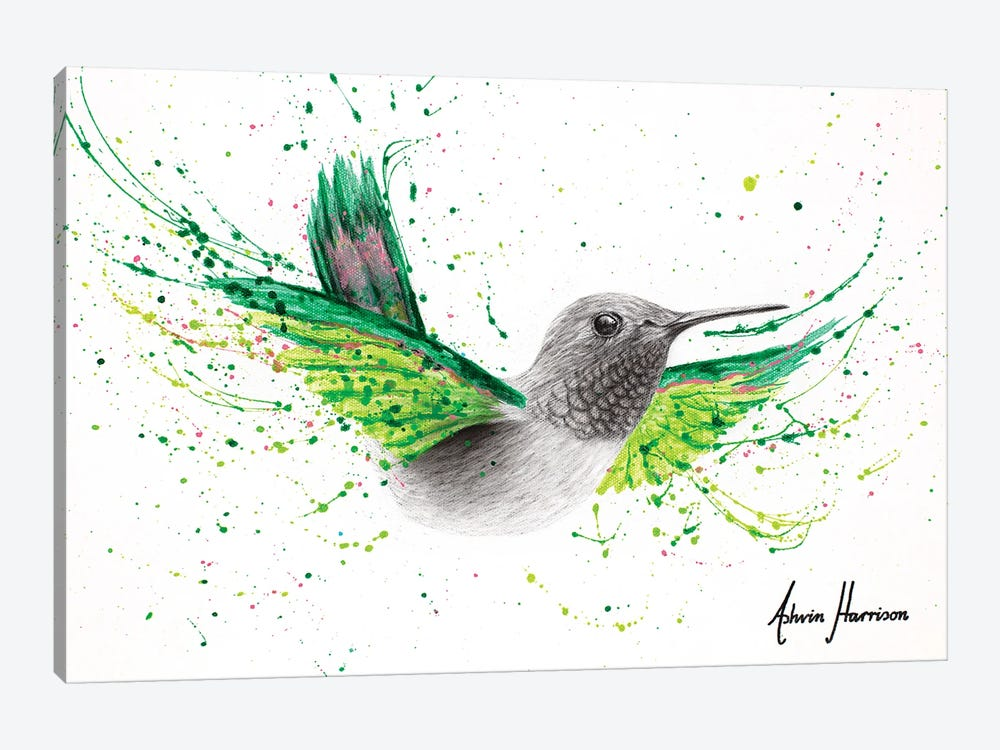 River City Hummingbird by Ashvin Harrison 1-piece Canvas Art Print