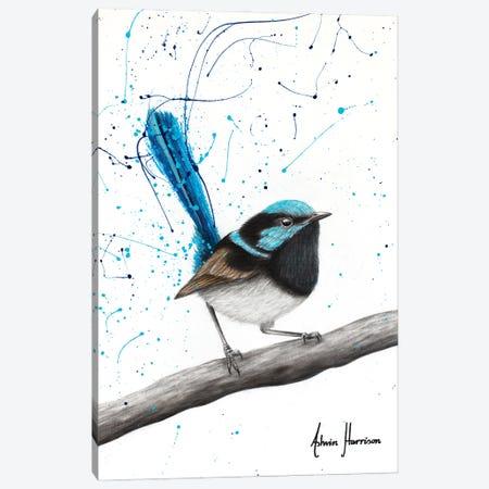 Whistling Wren Canvas Print #VIN749} by Ashvin Harrison Canvas Wall Art