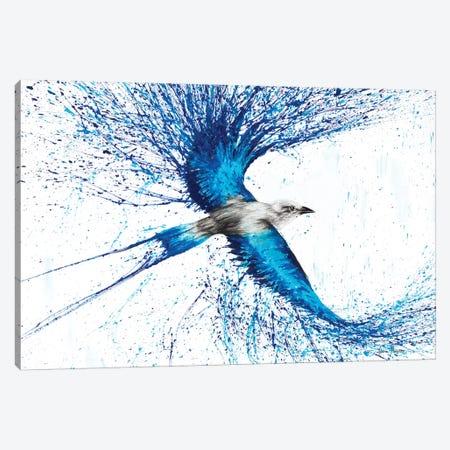 Ocean Explorer Canvas Print #VIN78} by Ashvin Harrison Canvas Art