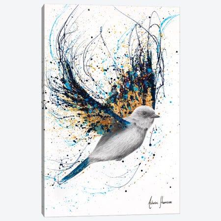 Night Treasure Bird Canvas Print #VIN825} by Ashvin Harrison Canvas Wall Art