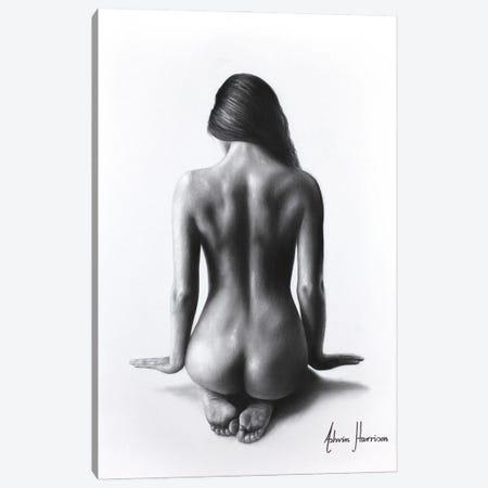 Balanced Canvas Print #VIN853} by Ashvin Harrison Canvas Wall Art