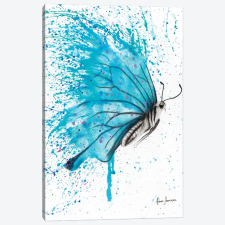 Aqua Butterfly Canvas Print #VIN9} by Ashvin Harrison Art Print