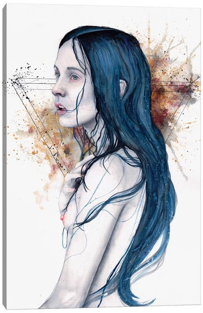 One For Sorrow Canvas Art Print