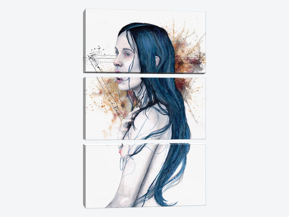 One For Sorrow by Victoria Olt 3-piece Art Print