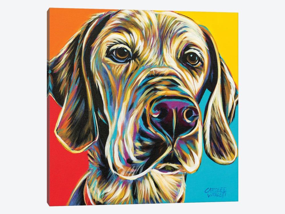 Canine Buddy II by Carolee Vitaletti 1-piece Canvas Art