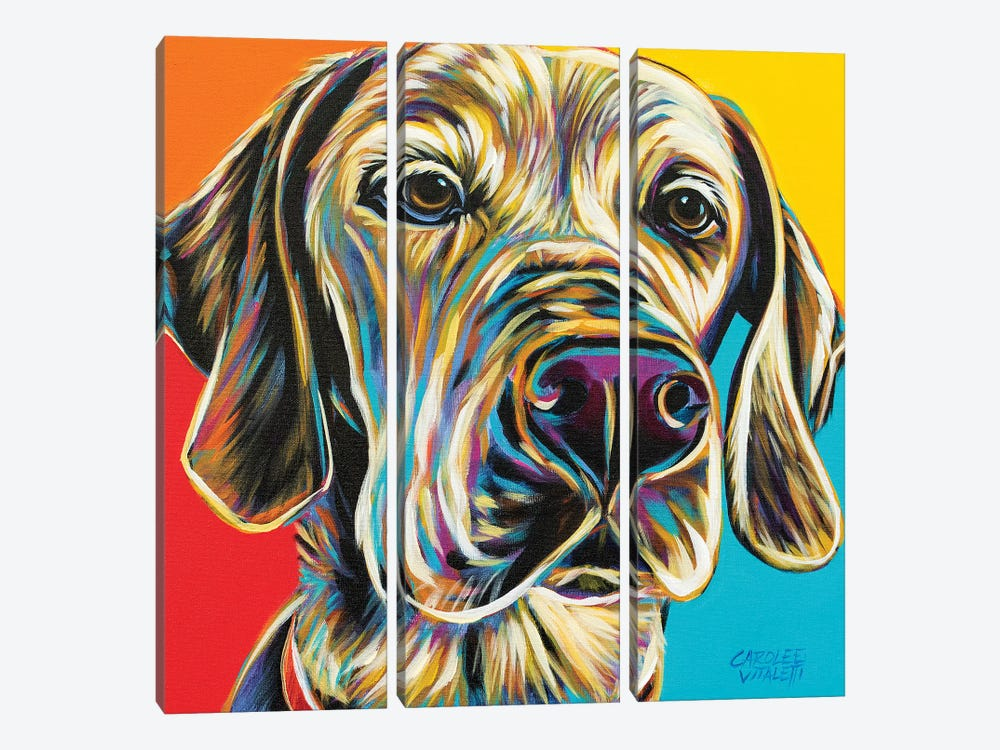 Canine Buddy II by Carolee Vitaletti 3-piece Canvas Wall Art