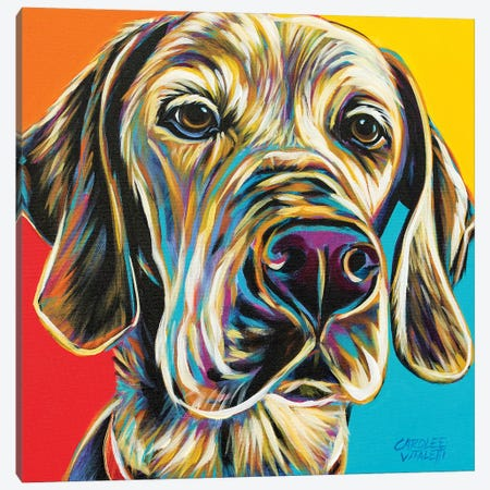 Canine Buddy II Canvas Print #VIT100} by Carolee Vitaletti Art Print