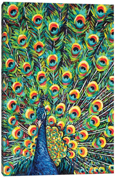 Lavish Peacock I by Carolee Vitaletti Canvas Art Print