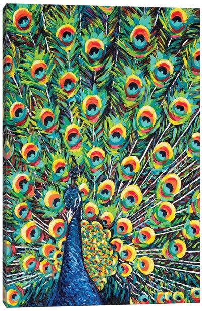 Lavish Peacock I Canvas Art Print