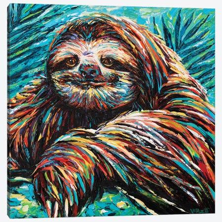Painted Sloth I Canvas Print #VIT118} by Carolee Vitaletti Canvas Wall Art