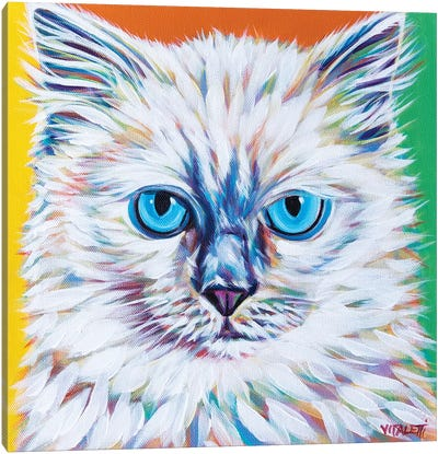 Classy Cat II by Carolee Vitaletti Canvas Art Print