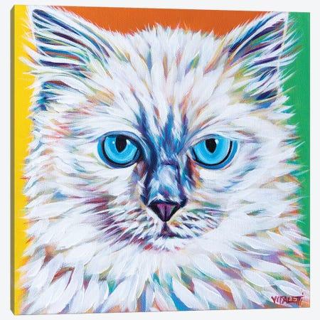 Classy Cat II Canvas Print #VIT123} by Carolee Vitaletti Art Print