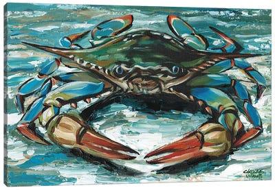 Blue Palette Crab II Canvas Art Print