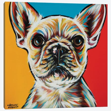 Chroma Dogs II Canvas Print #VIT133} by Carolee Vitaletti Canvas Art