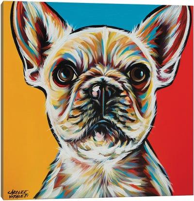 Chroma Dogs II Canvas Art Print