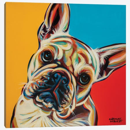 Chroma Dogs III Canvas Print #VIT134} by Carolee Vitaletti Canvas Print