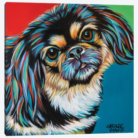 Chroma Dogs IV Canvas Print #VIT135} by Carolee Vitaletti Canvas Art Print