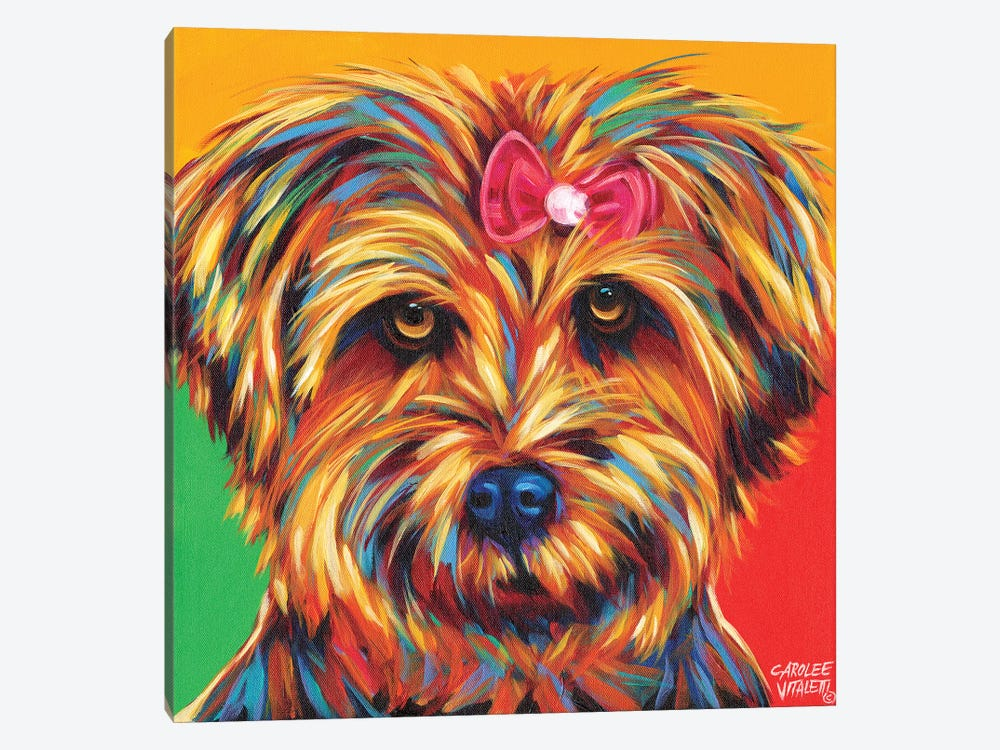 Sweet Yorkie I by Carolee Vitaletti 1-piece Art Print