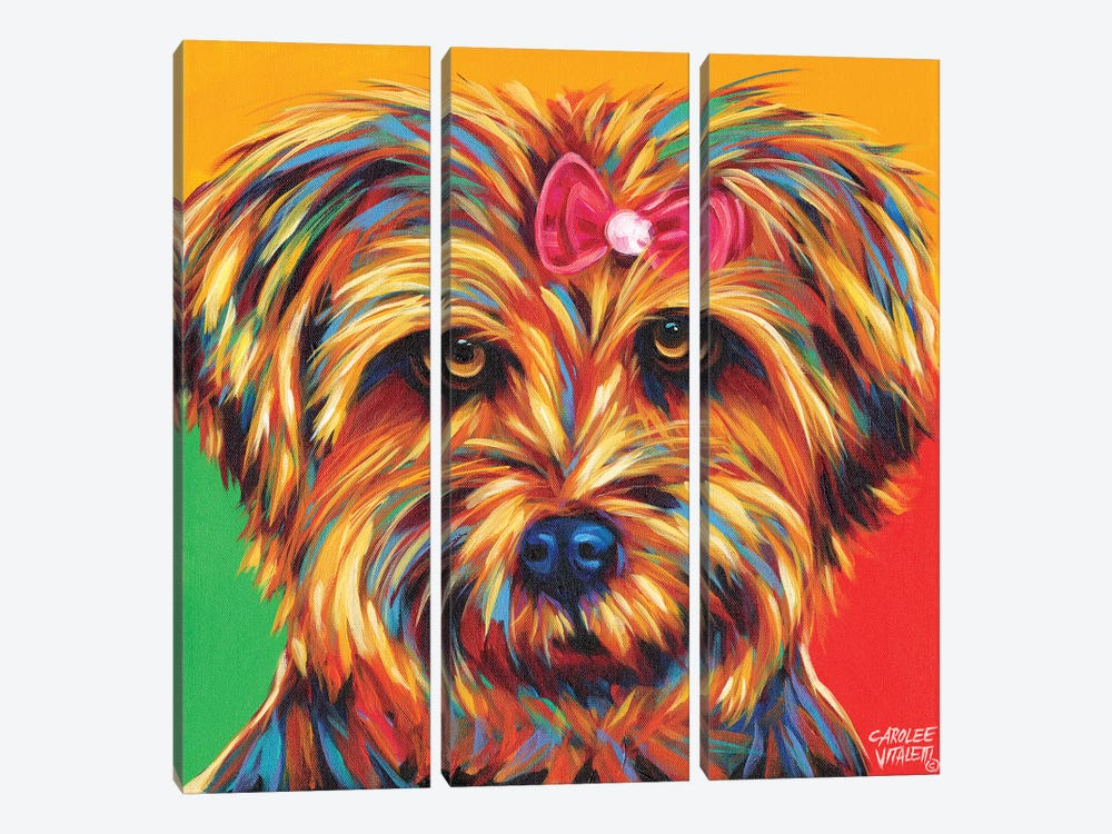 Sweet Yorkie I by Carolee Vitaletti 3-piece Canvas Print