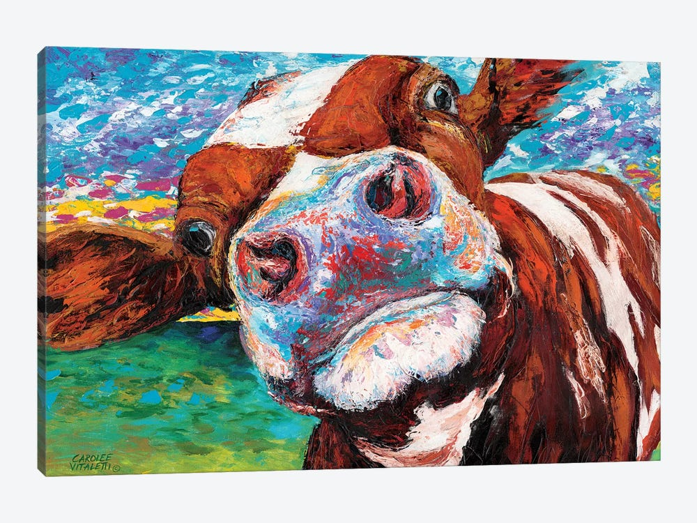 Curious Cow I by Carolee Vitaletti 1-piece Canvas Art