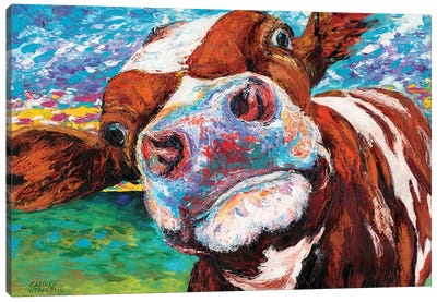 Curious Cow I Canvas Art Print