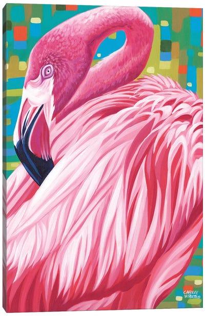 Fabulous Flamingos II Canvas Art Print