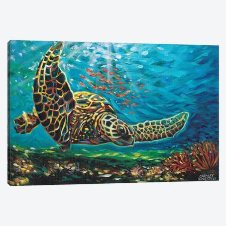 Deep Sea Swimming I Canvas Print #VIT25} by Carolee Vitaletti Canvas Art